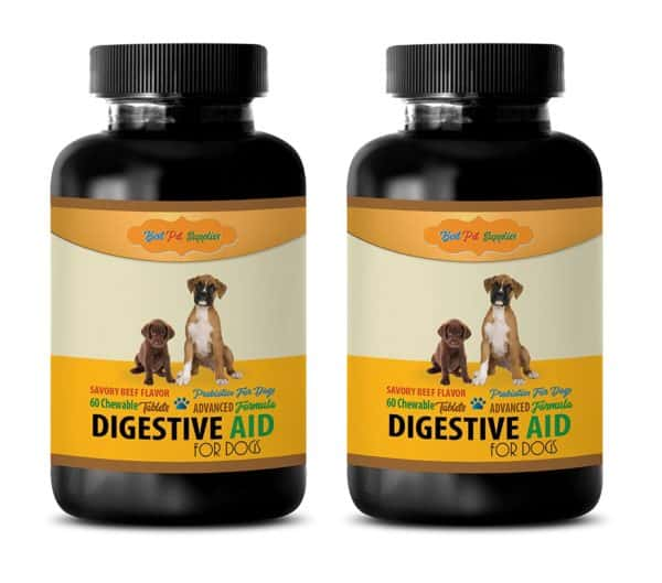 BEST PET SUPPLIES LLC Pet Digestive Enzymes For Dog - DIGESTIVE AID - FOR DOGS ONLY - PROBIOTICS - BEEF FLAVOR - CHEWABLE - Pet Digestive Aid - 120 Chews (2 Bottle)