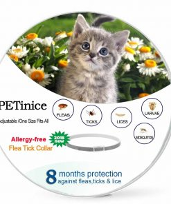 Flea and Tick Prevention For Dogs Cats, Dog Flea and Tick Control, Flea Collar for Dogs Cats, One Size Fits All (Cat-One size fits all)