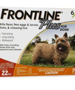 6 MONTH Frontline PLUS Orange For Dogs 022 lbs