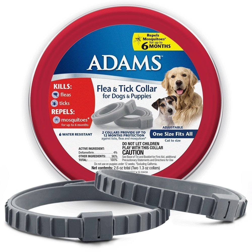Dog Collar Pack