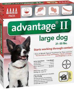 Advantage II Large Dog 4-Pack