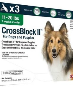 CrossBlock II Flea Preventative For Dogs 11-20 Lbs. (3-Pack)