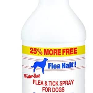 Flea Halt! Water-Based Flea & Tick Spray for Dogs Plus Citronella Scent, 40 fl oz