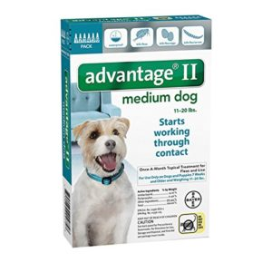 Bayer Advantage II, Dog, 11-20 lbs, 6 month Treatment